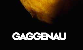 Gaggenau appliance offer