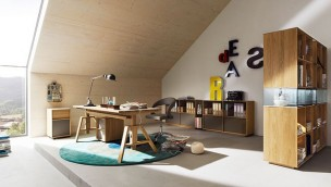 Lux Home Office